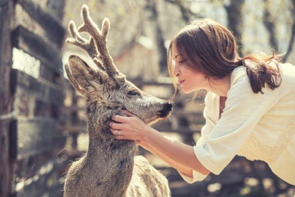 Animales:  el rol más significativo del ser humano es preservarlos, cuidarlos y evitar que sigan en peligro.