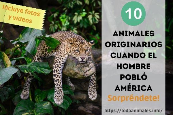 Animales originarios cuando el hombre pobló América